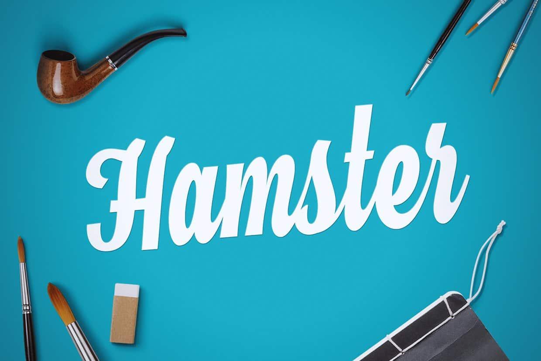 Шрифт Hamster