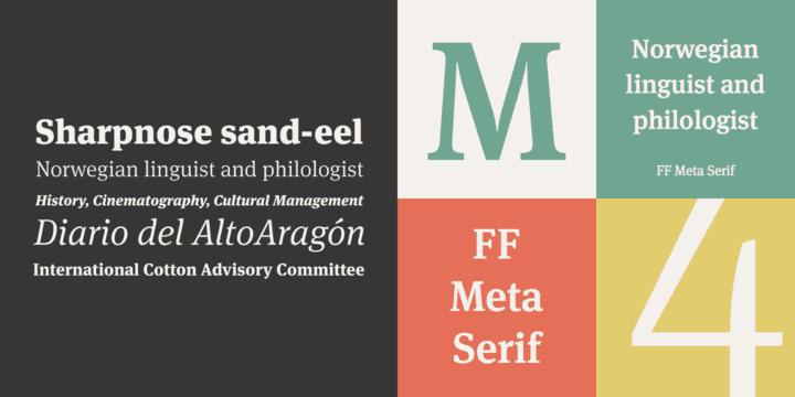 FF Meta Serif шрифт скачать бесплатно