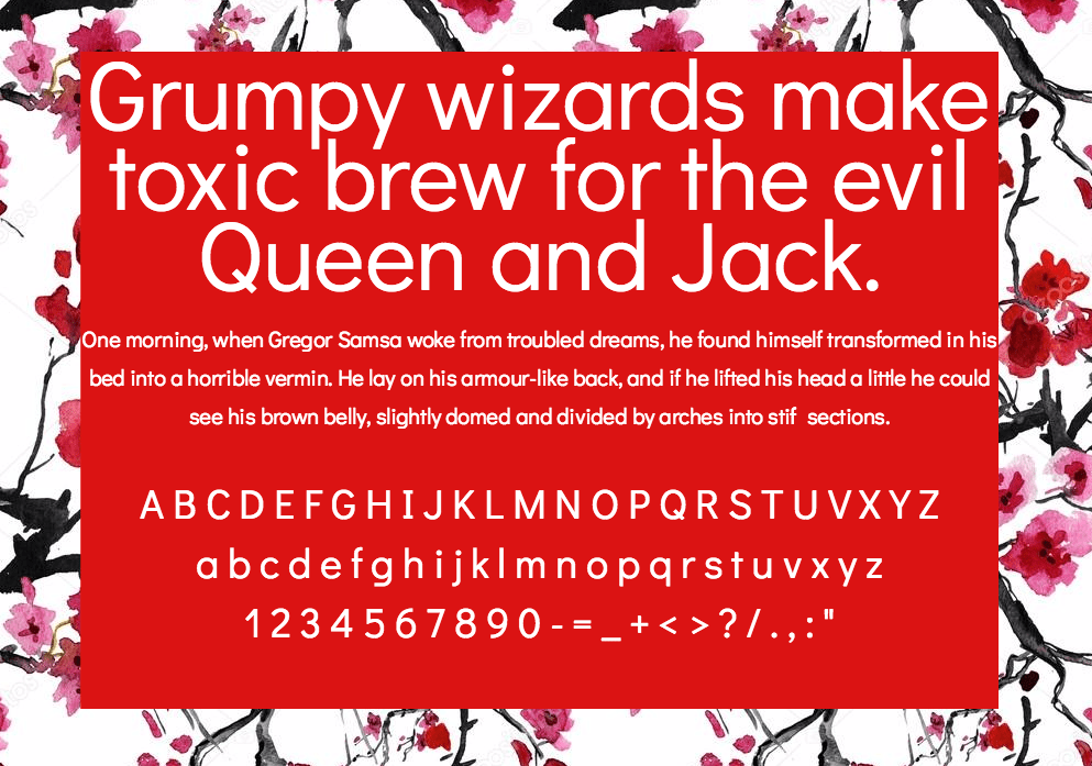 Didact Gothic шрифт скачать бесплатно