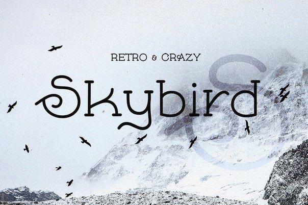 Skybird шрифт скачать бесплатно