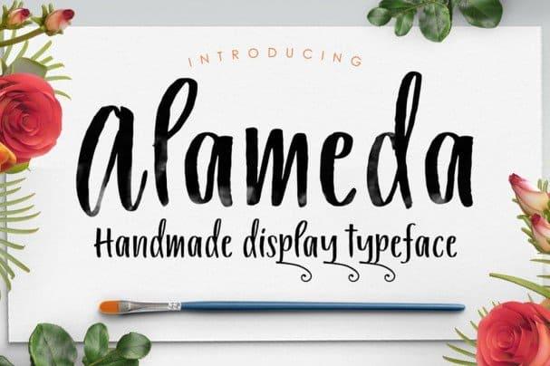 Alameda Typeface шрифт скачать бесплатно