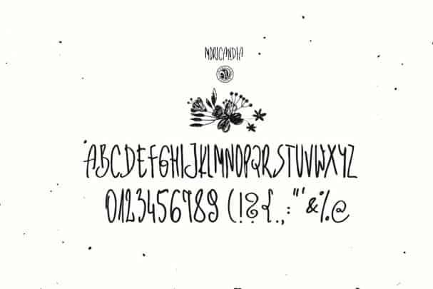 Moricandia Font шрифт скачать бесплатно