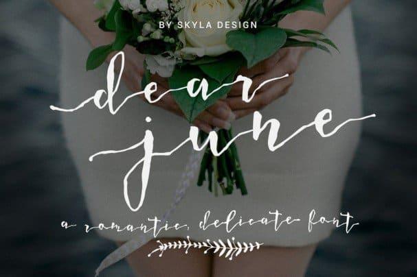 Romantic wedding font - Dear June шрифт скачать бесплатно