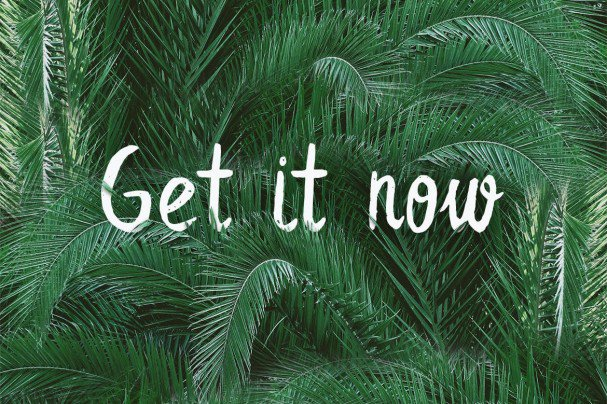 Leafy Extended Brush   шрифт скачать бесплатно