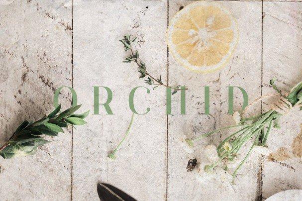 Orchid Font шрифт скачать бесплатно