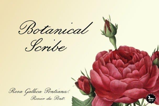 Botanical Scribe шрифт скачать бесплатно