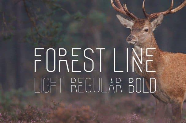 Forest Line Font Condensed шрифт скачать бесплатно