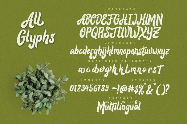 Alora typeface шрифт скачать бесплатно