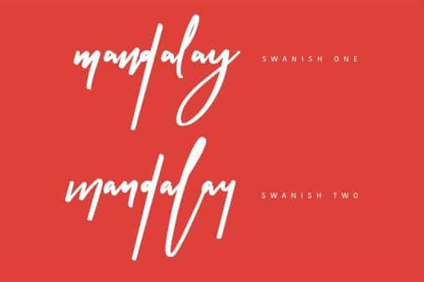 Swanish Typeface шрифт скачать бесплатно