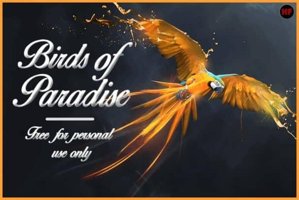 Birds of Paradise шрифт скачать бесплатно
