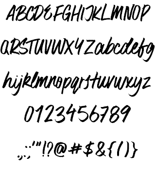 Surfer Bay шрифт скачать бесплатно