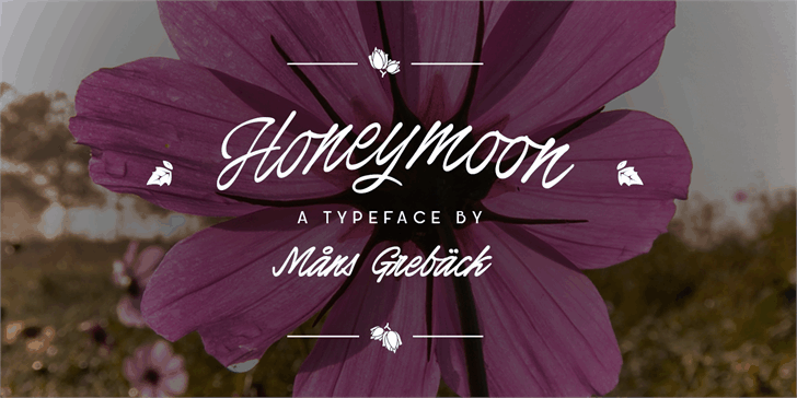 Honeymoon шрифт скачать бесплатно