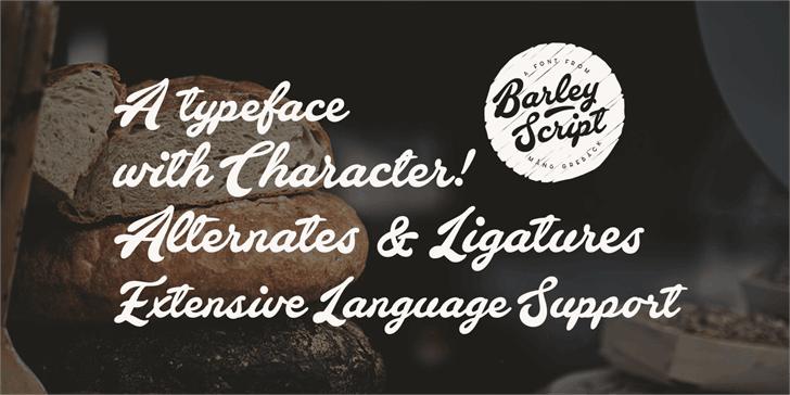 Barley Script шрифт скачать бесплатно