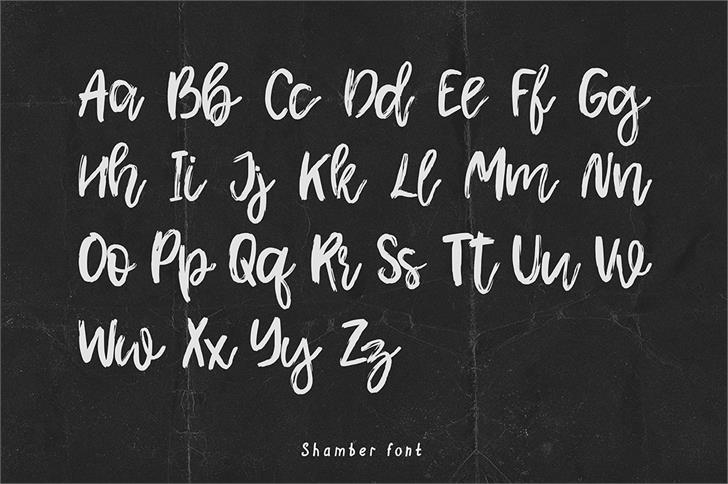 Shamber шрифт скачать бесплатно