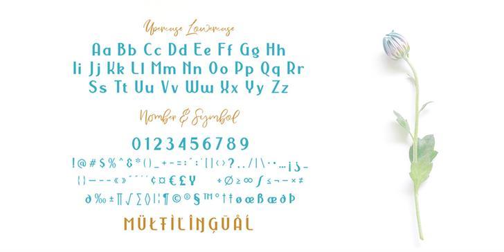 Nermola Script шрифт скачать бесплатно