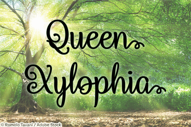 Queen Xylophia шрифт скачать бесплатно