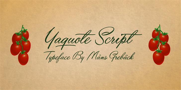 Yaquote Script шрифт скачать бесплатно